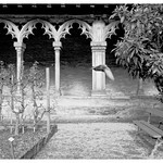 Augustins Cloister Toulouse -  14 th c