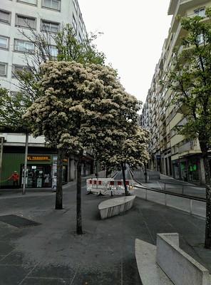 Primavera no Ensanche - Agustín Pena