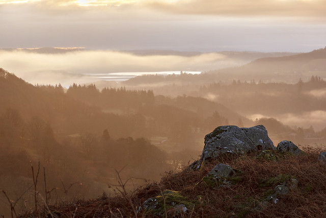 Sunrise at High Close, Langdale, Lake District National Park, Cumbria, UK