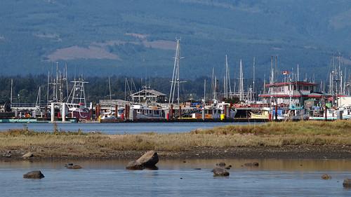 comox harbour filberg bc britishcolumbia