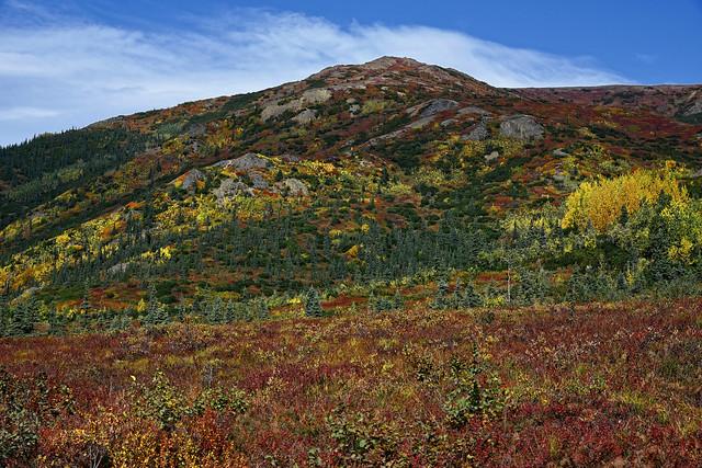 Get Stoked for Denali National Park & Preserve!