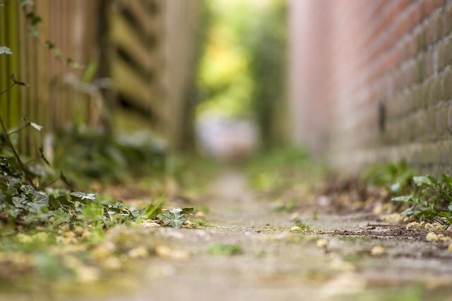 Narrow alley/DOF
