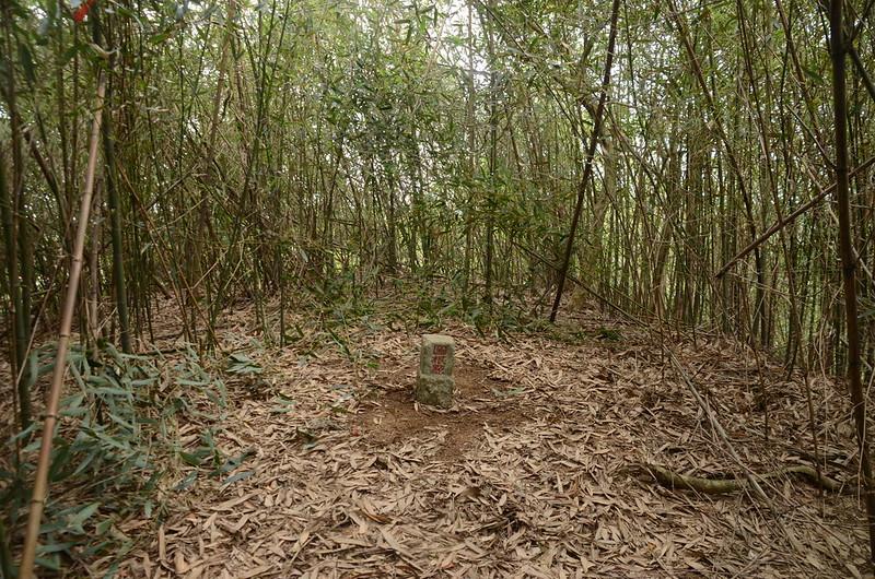 石樁臼(三百六坑山)冠字服(10)土地調查局圖根點(Elev. 116 m)