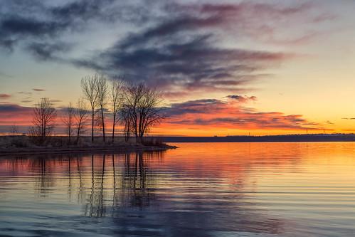 sunrise dawn daybreak morning trees silhouette landscape lake lakechatfield colorado chatfieldstatepark
