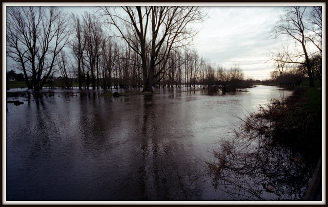 Flooding of the river Niers 03
