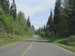Not too far away from the Bell II Lodge on Stewart Cassiar Hwy