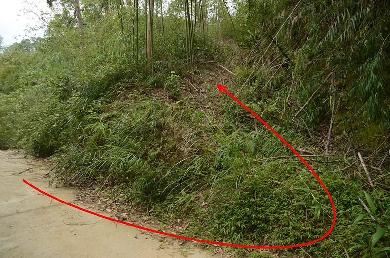 石樁臼(三百六坑山)荒廢土產道 1