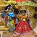 Darshan from IMG_0212
