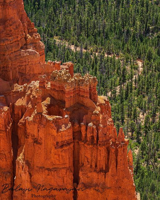 Bryce Cliffs