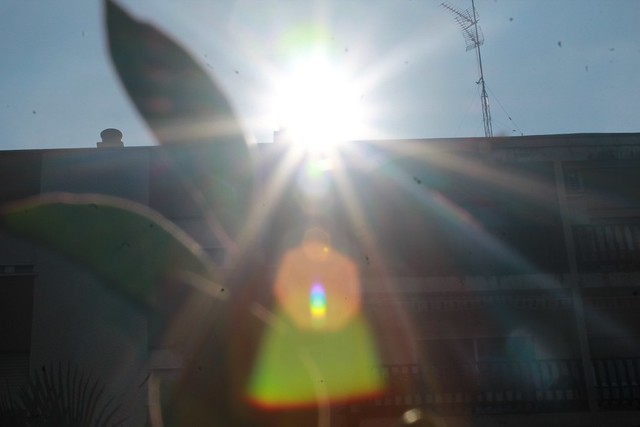 eclectic sun.sol ecleptico