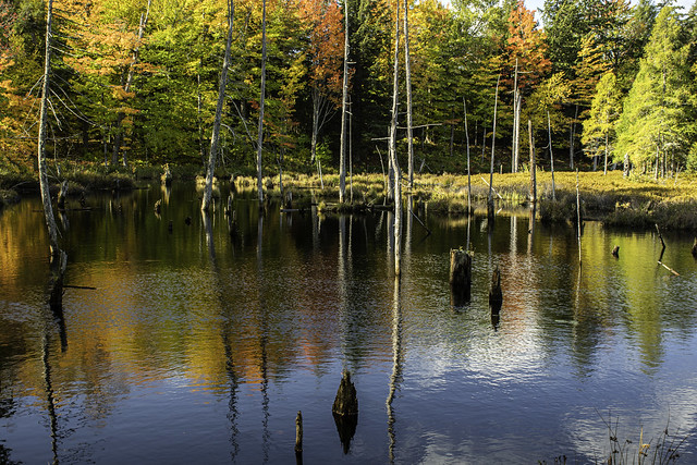 colorful pond near L'Anse Michigan