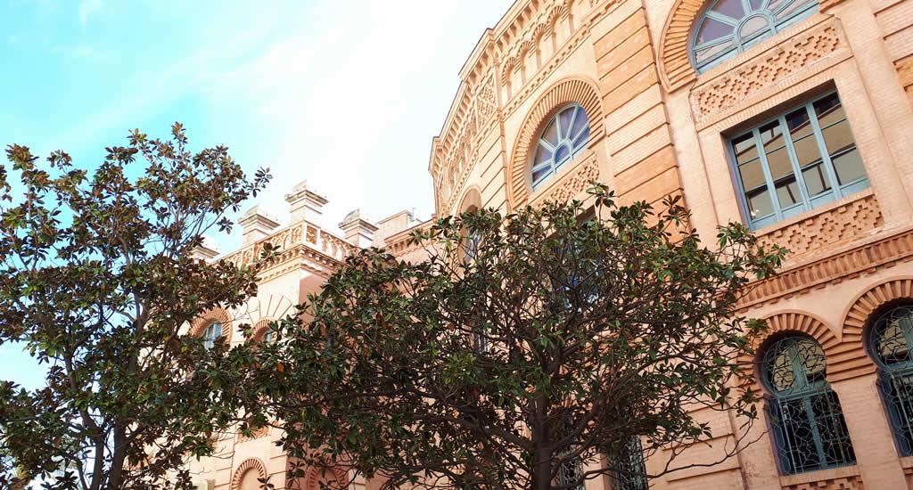 Dagtrip Cadiz vanuit Sevilla | Mooistestedentrips.nl