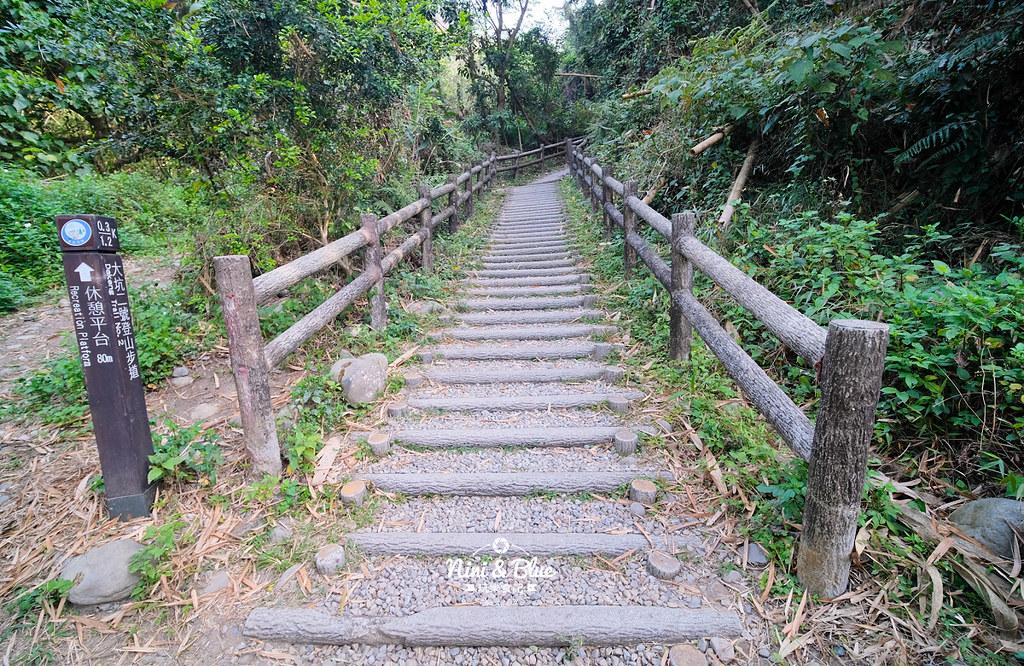 大坑2號步道 大坑登山步道09