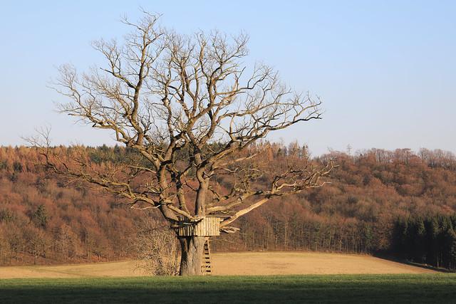 Kallenhardt - Schloss-Route