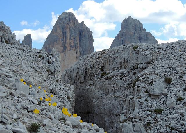 Alpe Mattina 12