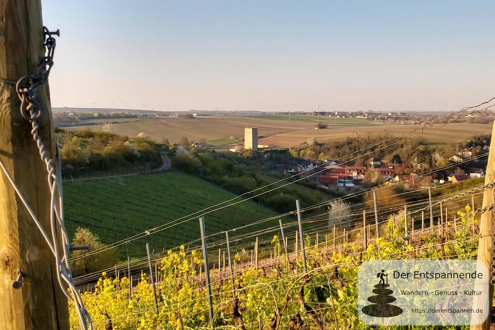 Schwabsburg: Bergfried der Schwabsburg