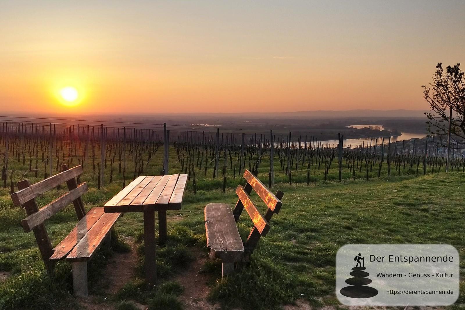 Sonnenaufgang über dem Rhein am Niersteiner Wartturm