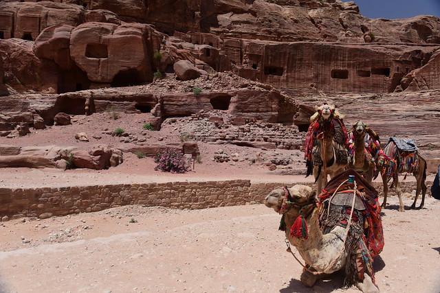 Petra, Jordan, June 2019 488