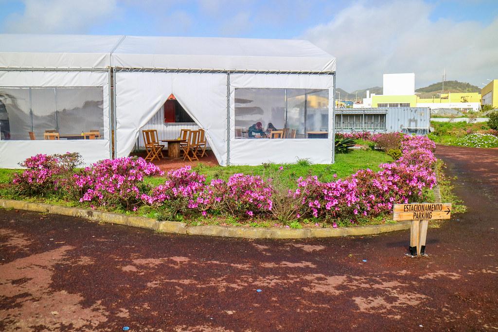Ananas dos Açores es una de las plantaciones de piña que se pueden visitar en Ponta Delgada