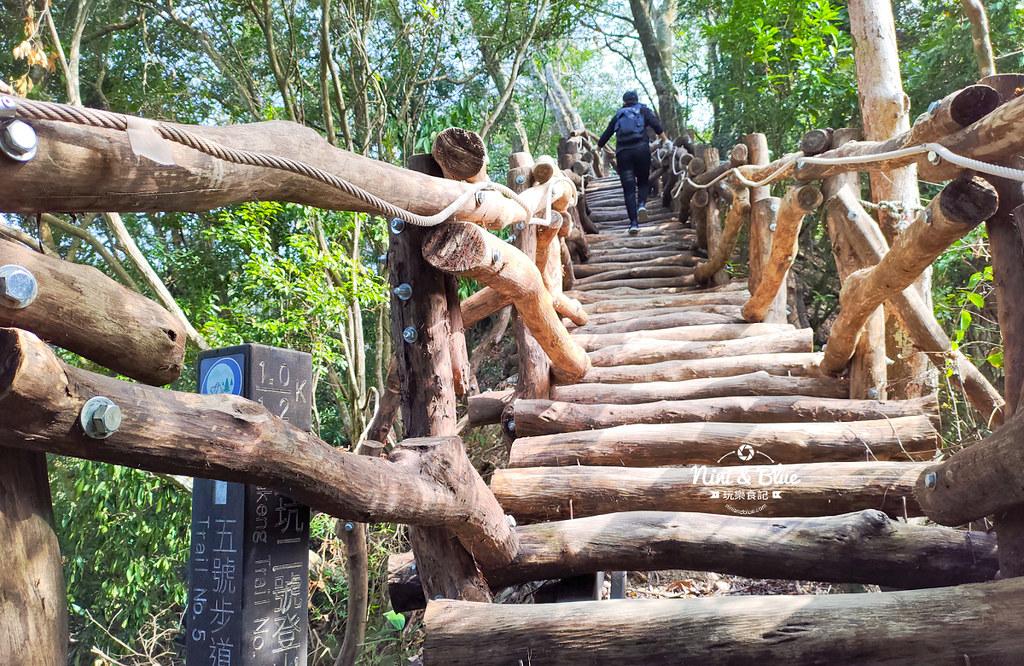 大坑2號步道 大坑登山步道31