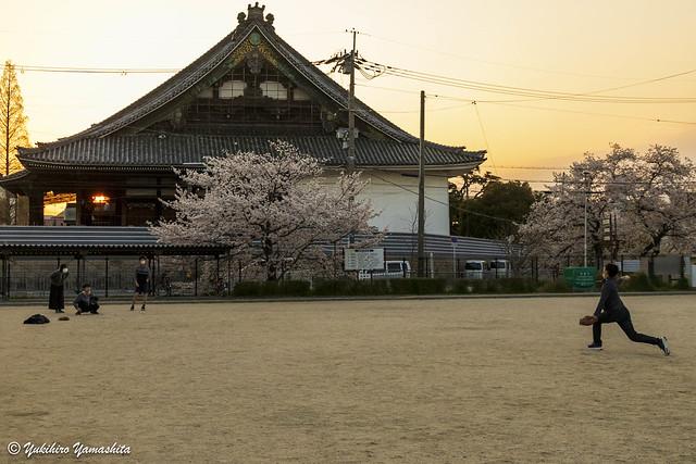 Boys playing baseball around sunset