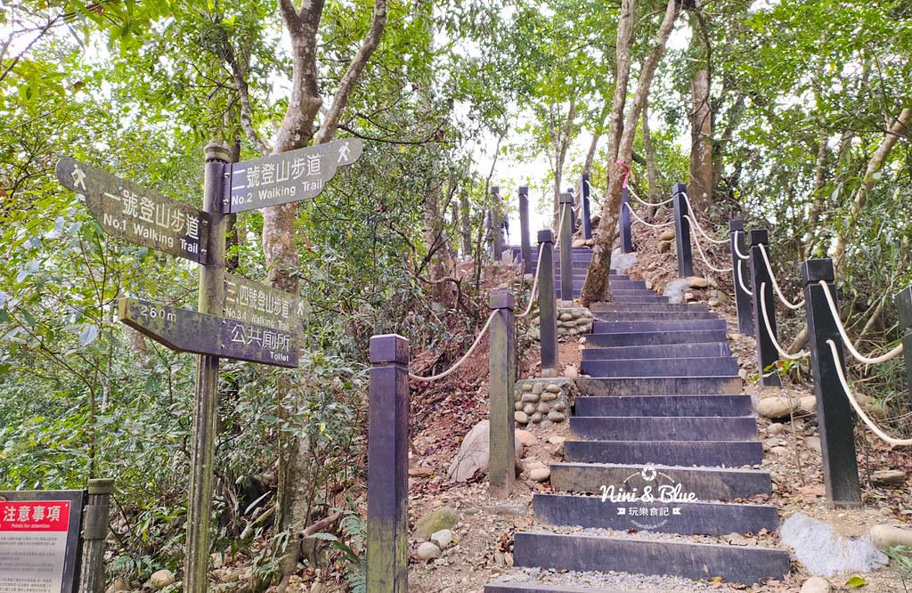 大坑2號步道 大坑登山步道36