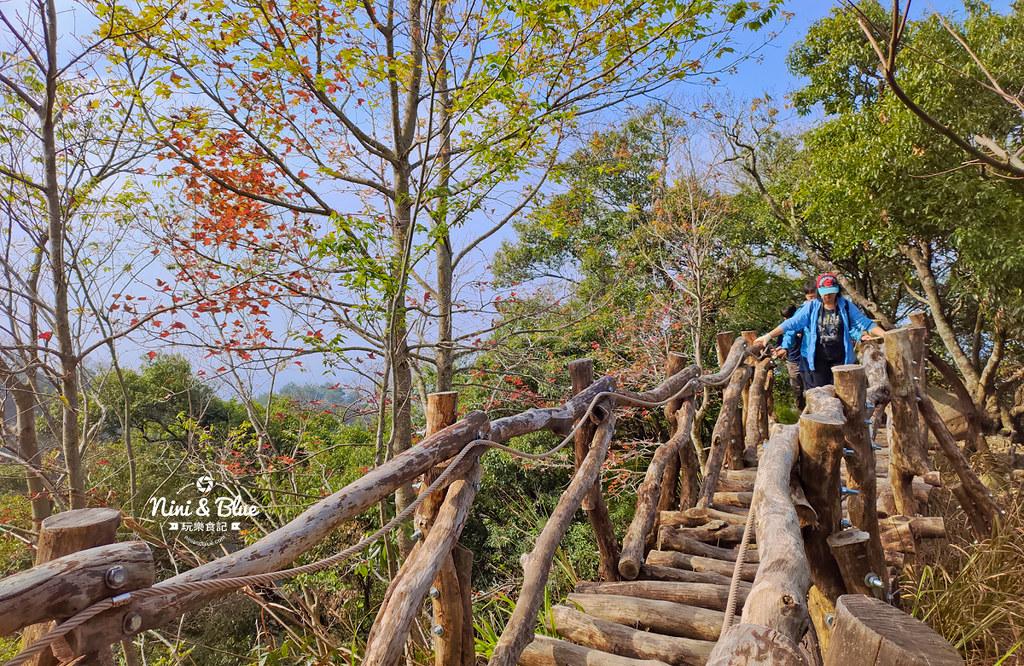 大坑2號步道 大坑登山步道30