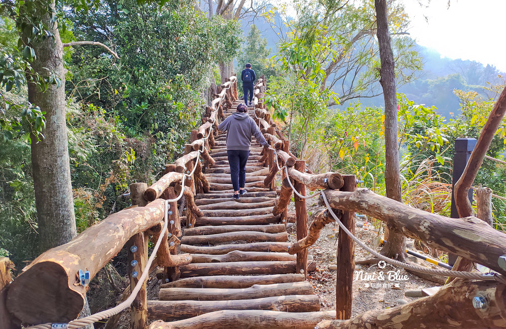 大坑2號步道 大坑登山步道17
