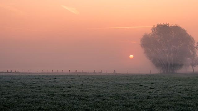 Sonnenaufgang im Münsterland