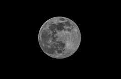 JUST RISEN: TONIGHT's SUPERMOON