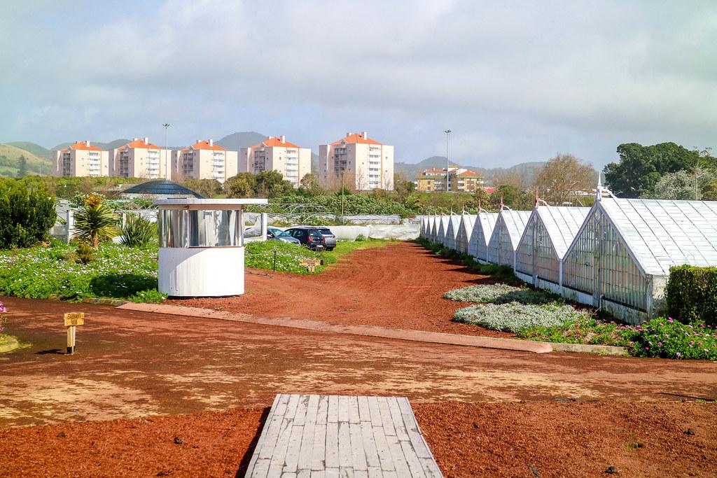 Visitar una plantación de piñas en Ponta Delgada es una de las recomendaciones en la isla de Sao Miguel
