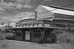 HC&S Co. Puunene Meat Market (1926) B&W