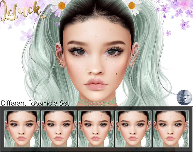 [LeLuck]Different Facemole Set