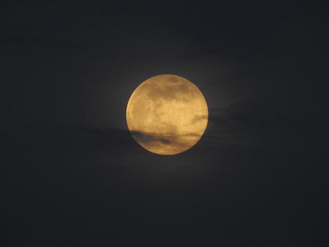 Pink Super Moon-07  April 2020 DSCN6928