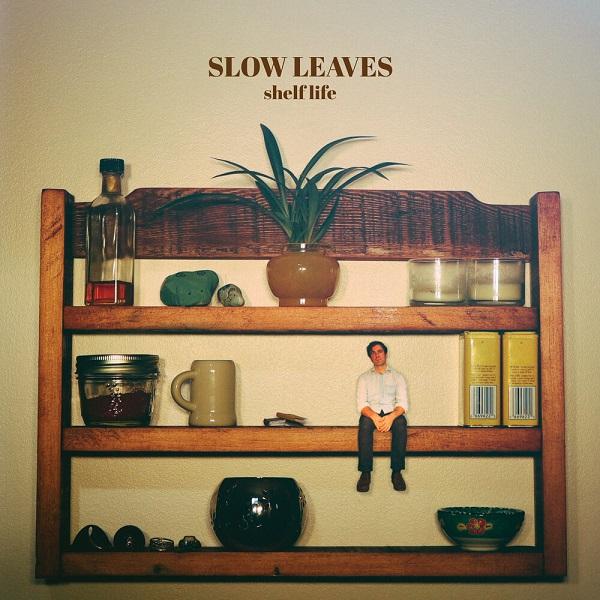 Slow Leaves - Shelf Life