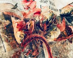 Sardines in newsprint
