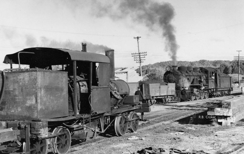 Heisler and Ba 146 at Ngahere R.B. Croker Railway Enthusiast Society 1961 Midland Rail Tour