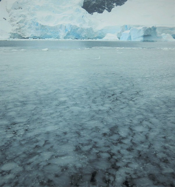 Morning on the Antarctic Cruise
