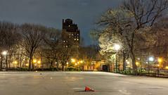 Skate Park at Night