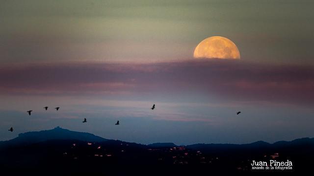8 de Abril, super lluna