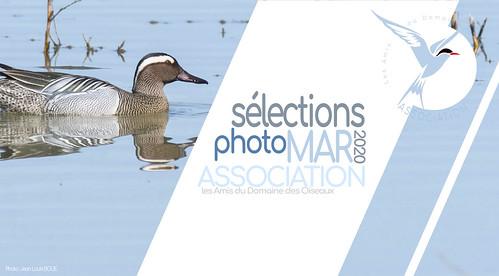 LES SÉLECTIONS MARS 2020 - Les Amis du Domaine des Oiseaux