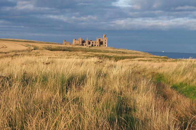 Slains Castle from Cruden Bay