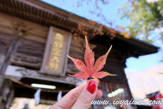 japan autumn 2019 (3)