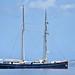 """""""Wylde Swan"""", Roseau, Dominica - 6 Mar 2020"""