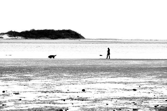 Ipswich Beach