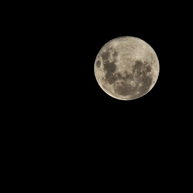 100/366 The Full moon from OZ