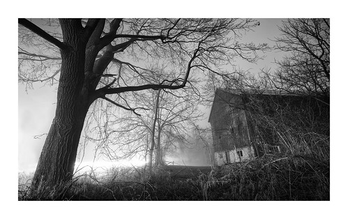 dark bw black white zwart wit sony voigtlander foggy street cars trees ontario evening winter barn farm lights tree a7ll bnw heliar time exposure streaming barns mood weeds cityscape ancaster