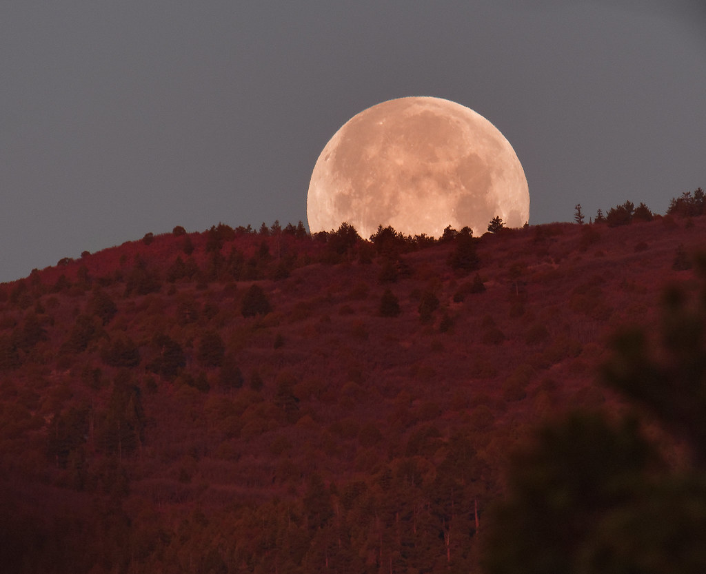 Full Moon setting over the Sandia Mountains