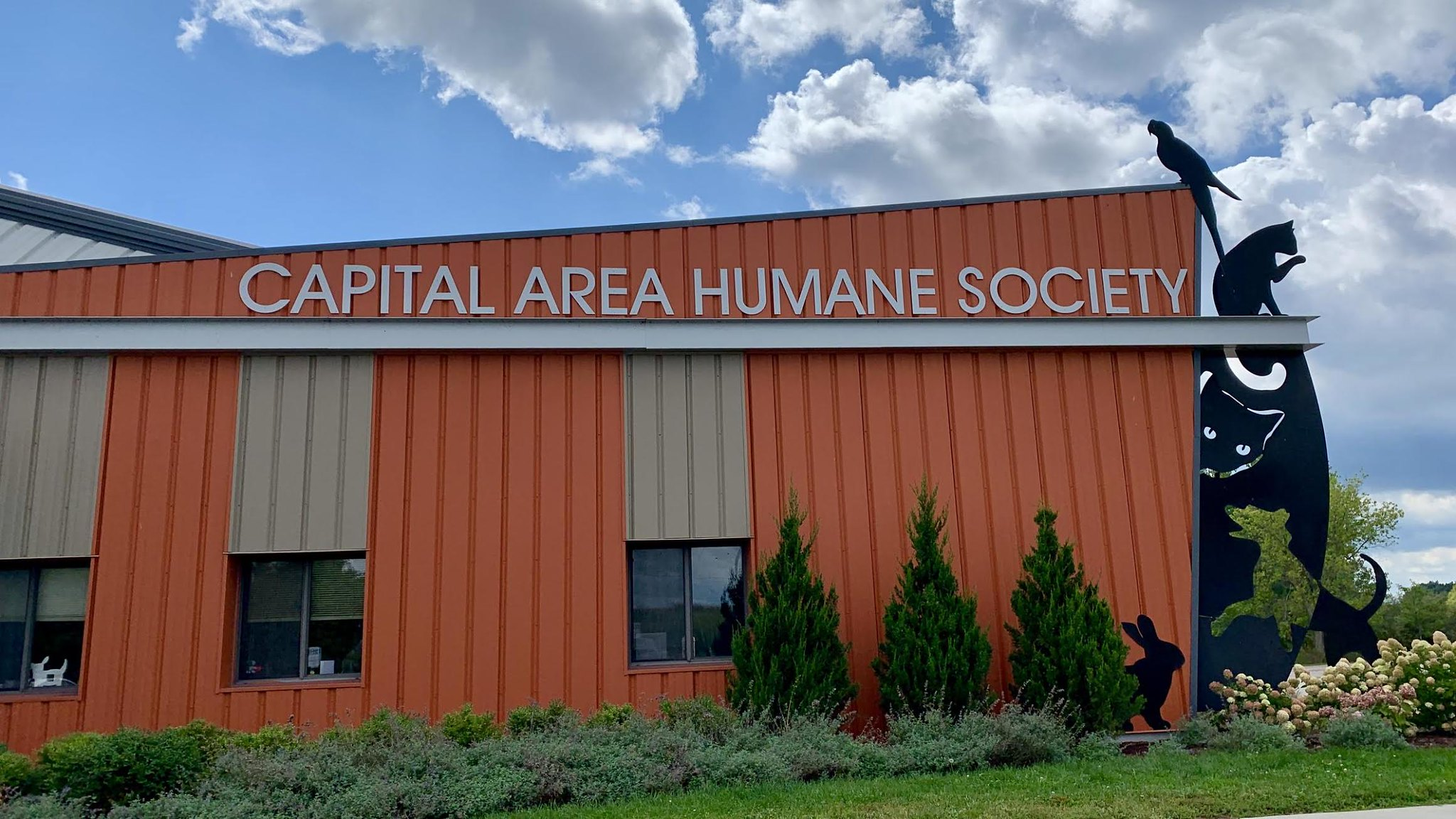 Capital Area Humane Society impacted by COVID-19