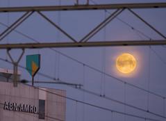 Full Moon - Early morning